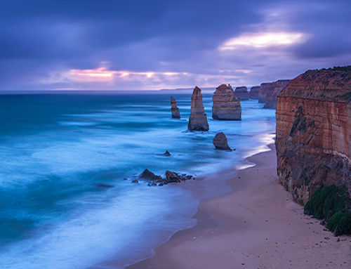 Great Ocean Road Trip